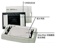 半干转印槽Biorad Trans-Blot SD Semi-Dry Transfer Cell